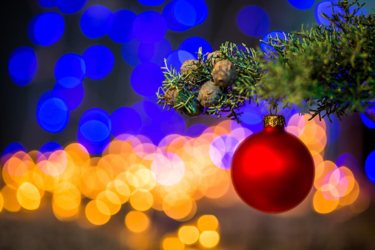 Let there be lights - the countdown to Christmas is underway in East Dunbartonshire.